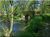 SK6515 : Footbridge over the Wreake near Thrussington Mill by Alan Murray-Rust