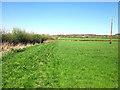 SJ5266 : The Eddisbury Way near Kelsall by Jeff Buck