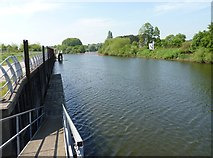 SO8453 : River Severn south of Worcester by Jeff Gogarty