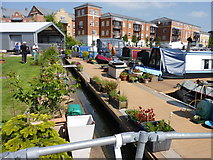SO8453 : Gardens for the boat people by Jeff Gogarty