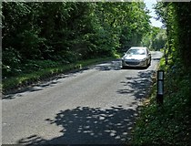 SE5214 : Greengate Road at White Ley Plantation by Neil Theasby