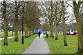 TQ2874 : Footpath, Clapham Common by N Chadwick