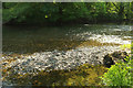 SX4766 : Shingle banks, River Tavy by Derek Harper