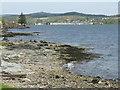 NR8585 : Rocky shore at Ardrishaig by M J Richardson
