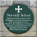 TG2308 : Norwich School (plaque) by Evelyn Simak