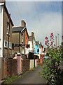 SX8571 : Back alley, Newton Abbot by Derek Harper