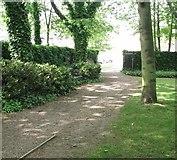 TG2309 : Path in the Secret Garden by Evelyn Simak