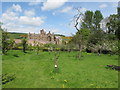 NT5434 : Priorwood orchard and Melrose Abbey by David Hawgood