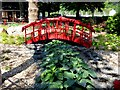 SX8751 : The Japanese Garden in the Royal Avenue Gardens by Steve Daniels