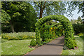 SU8512 : Laburnum arch, West Dean Gardens by Ian Capper