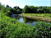 H4772 : Camowen River, Cranny, Omagh by Kenneth  Allen
