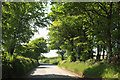 SS4115 : Road to Thorne Moor by Derek Harper