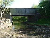 SK0305 : Pelsall Old Railway Bridge, from the northwest by Christine Johnstone