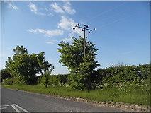TL3142 : Royston Road, Litlington by David Howard