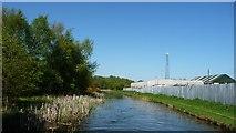 SK0305 : Cyclists on the Wyrley & Essington Canal towpath by Christine Johnstone