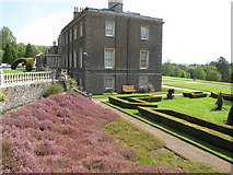 NT4227 : Bowhill, house, lawn, heather bank, topiary by David Hawgood