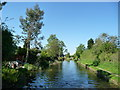 SK0002 : The Wyrley & Essington Canal, looking north by Christine Johnstone