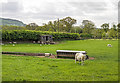 SJ9066 : WWII Cheshire: Ladder Stile pillbox, Macclesfield Canal (1) by Mike Searle