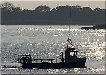 J5082 : The 'Marisco' off Bangor by Rossographer