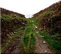 SO7124 : Litter-strewn track to a field gate, Lower Boulsdon, Gloucestershire by Jaggery