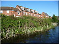 SJ9901 : Canalside housing, Water Reed Grove by Christine Johnstone