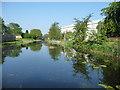SJ9700 : The Wyrley & Essington Canal, looking west at Lane Head by Christine Johnstone
