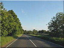 TL2146 : Biggleswade Road, Sutton by David Howard