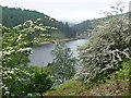 SK1693 : May blossom beside Howden Reservoir by Graham Hogg