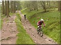 SK1690 : Mountain bikers at speed by Graham Hogg
