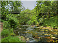 SJ9099 : Bridge over River Medlock at Medlock Vale by David Dixon