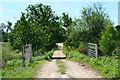 SU3016 : Track at Foxbury by David Martin