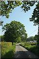 SS5706 : Lane to Waldons Cross by Derek Harper