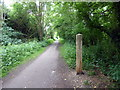 TQ5812 : Milepost 7 on Cuckoo Trail by PAUL FARMER