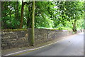 SE0723 : Stone wall on SE side of Washer Lane by Roger Templeman