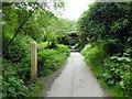 TQ5816 : Milepost 4 on Cuckoo Trail by PAUL FARMER