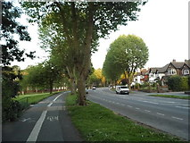 SO9490 : The Broadway, Dudley by David Howard