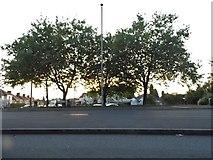 SO9289 : Stourbridge Road, Dudley by David Howard