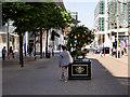SJ8398 : Tree of Hope, Exchange Street by David Dixon