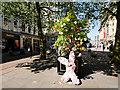 SJ8398 : Tree of Hope, St Annes Square by David Dixon