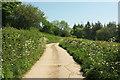 SS5412 : Track near Merton Mill by Derek Harper