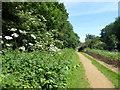 TQ1077 : The London LOOP in Cranford Park by Marathon