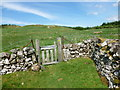 NX6593 : Gate on Southern Upland Way by Alan O'Dowd