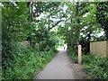 TQ5905 : Milepost 12 on Cuckoo Trail by PAUL FARMER