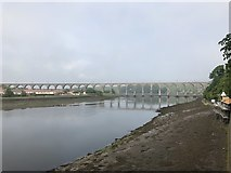 NT9953 : Royal Border Bridge by Jonathan Hutchins