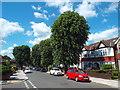 TQ1782 : Queen's Walk, Ealing by Malc McDonald
