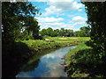 TQ1682 : River Brent, near Ealing by Malc McDonald