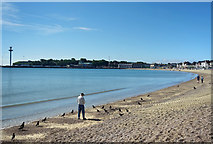 SY6879 : Feeding the Birds, Weymouth Beach by Des Blenkinsopp