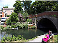 SO8104 : Ryeford Bridge, Stroudwater Canal by Vieve Forward