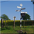 SD6570 : Finger-post, Four Lane Ends by Ian Taylor