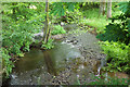 SX8071 : River Lemon from Newhouse Bridge by Derek Harper